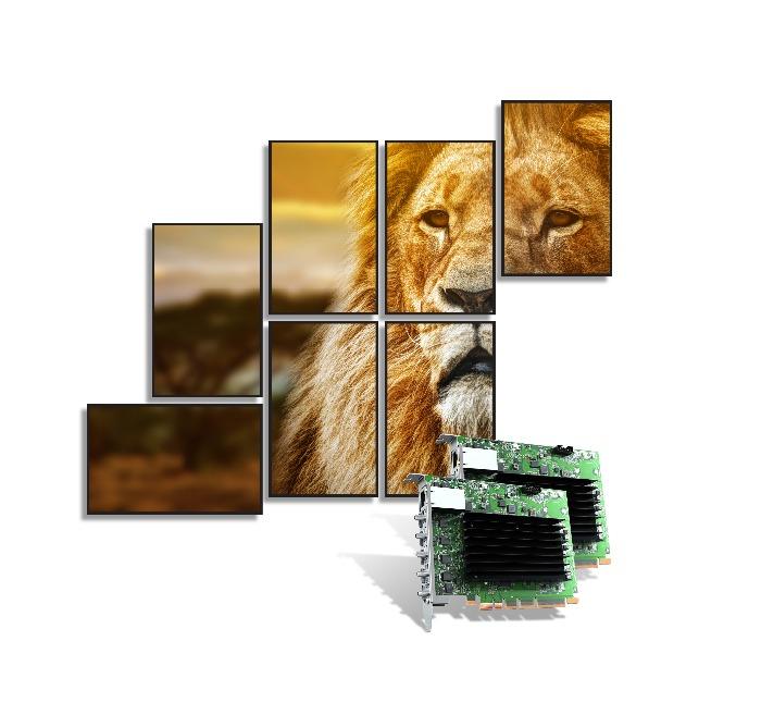Matrox QuadHead2Go Q155 Card lion